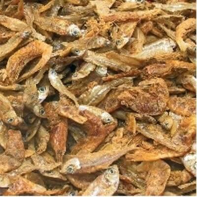 Jbl energil nourriture base de poissons et crustac s for Donner des poissons