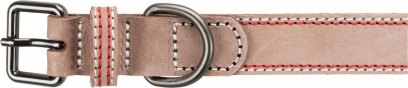 Collier pour chien couleur cappuccino Native - 6 tailles disponibles