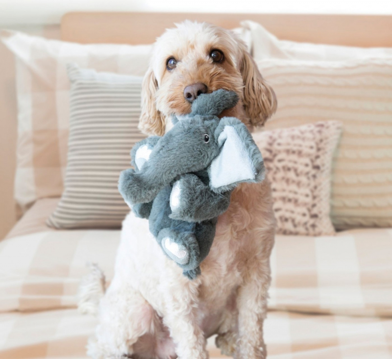 Peluche pour chien Comfort Kiddos Elephant - Deux tailles disponibles