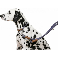 Kerbl Collier pour chien Phoenix