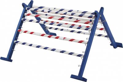 Hürdenlauf