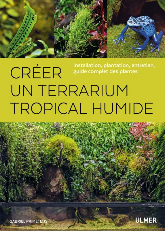Créer un terrarium tropical humide NVELLE ED