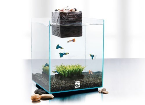 Aquarium fluval shui avec syst me de filtration int gr for Petit aquarium avec pompe