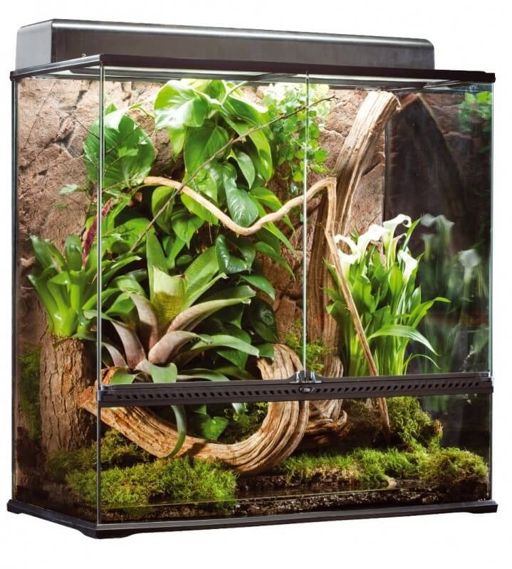terrarium exo terra 90x45x90 cm xl terrarium et meuble. Black Bedroom Furniture Sets. Home Design Ideas