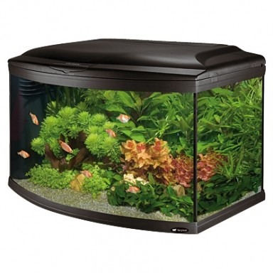 aquarium 180 litre. Black Bedroom Furniture Sets. Home Design Ideas