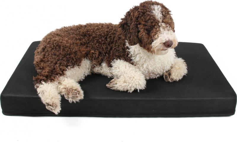 Matelas mémoire de forme pour chien Romeo Zolia - 2 tailles disponibles