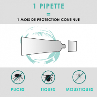 Pipettes antiparasitaires x2