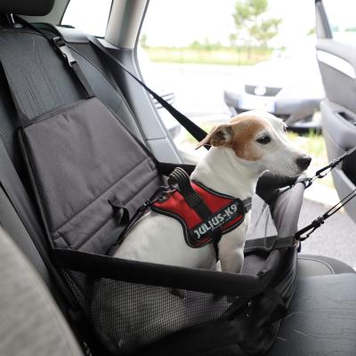 Elevador para perros