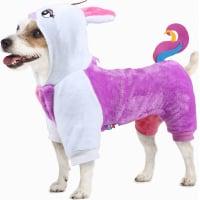 Verkleidungen für Hunde