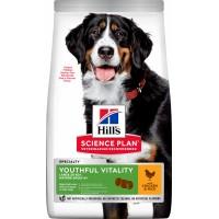 Hill's Science Plan Canine Mature Adult 6+ Youthful Vitality croquettes pour chien senior de grande taille au poulet
