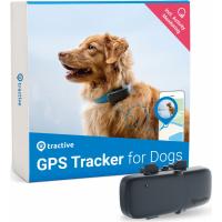 Localizador Tractive GPS DOG para cão
