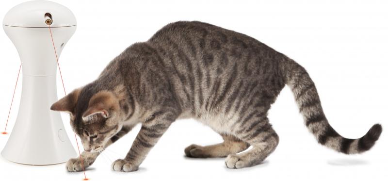 Jouet MULTILASER pour chat