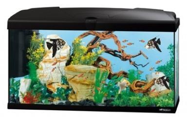 aquarium capri 80 100l aquarium et meuble. Black Bedroom Furniture Sets. Home Design Ideas
