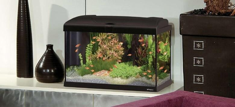 Aquarium CAPRI 80 100L