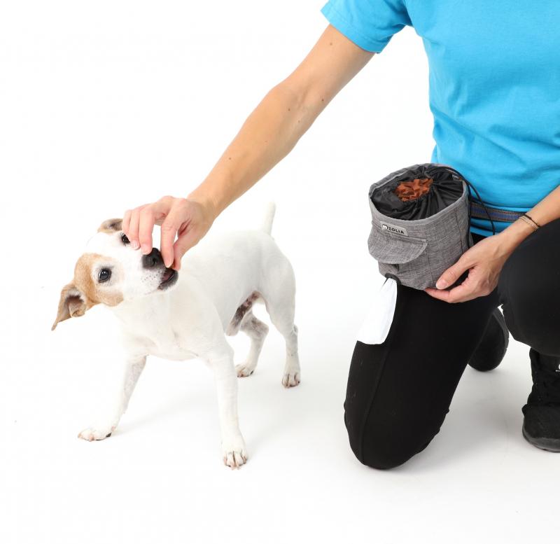 Zolia DoggyBag Leckerlibeutel