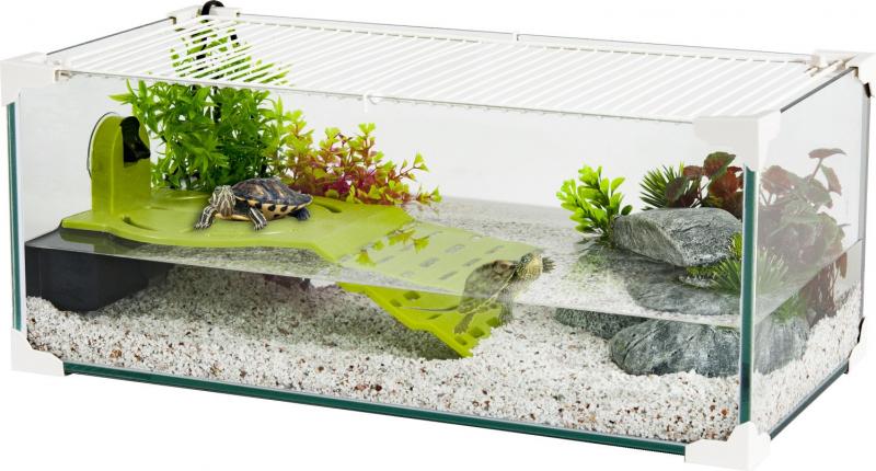 Plage Karapas pour tortue aquatique - vert ou marron