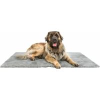 Tapis hygiénique pour chien