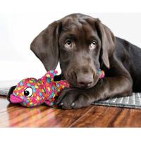Jouet pour chien KONG Poisson Volant Wubba Finz - plusieurs couleurs - plusieurs tailles