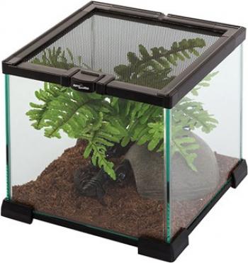 Terrario di vetro Reptizoo - Diverse dimensioni