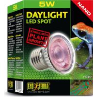 Eclairage terrarium Daylight LED Spot Nano 5W Exo Terra