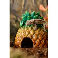 Cachette Ananas pour terrarium Exo Terra