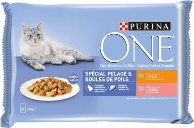 PURINA ONE Spécial Pelage & Boule de poils pour chat