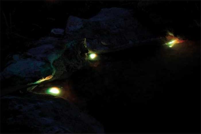 Juego de 3 focos sumergibles LED RGB Pontec Pondostar