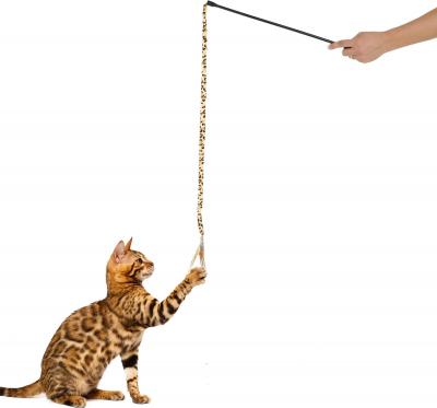 Canne à pêche Léopard pour chat Zolia