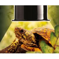 Dôme d'éclairage sans support pour Reptiles Exo Terra