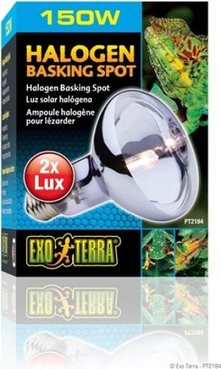 Exo Terra Halogen Basking Spot SunGlo Daylight Ampoule halogène