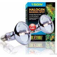 Ampoules halogènes Exo Terra SunGlo Daylite 150w