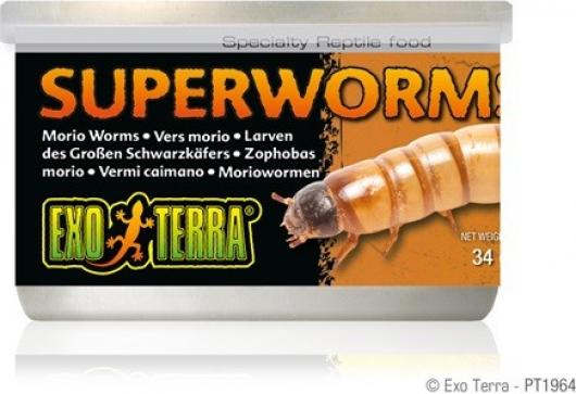 Nourriture en conserve Super Worms Exo Terra
