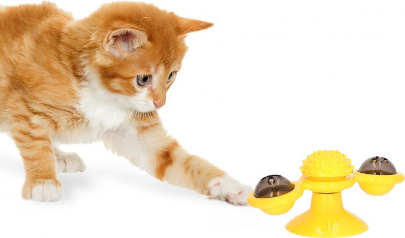 Spielzeug Fã R Kitten