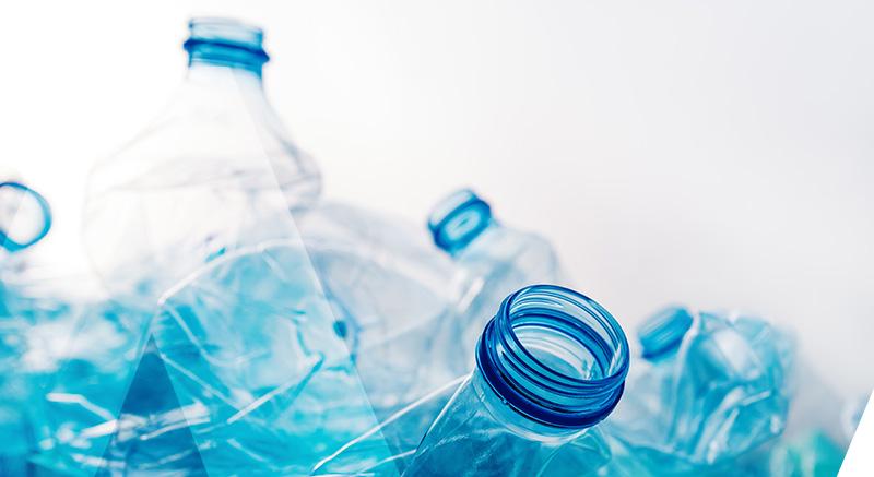 collier zolia ecopetly pour chien en bouteilles recyclées