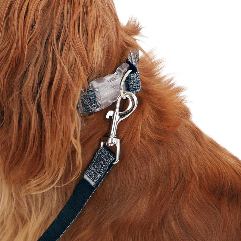 collier zolia ecopetly pour chien en bouteilles recyclées caracteristiques