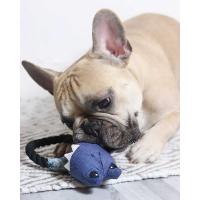 Jouet à tirer sonore Hochet grenouille Ecopetly de Zolia pour chien