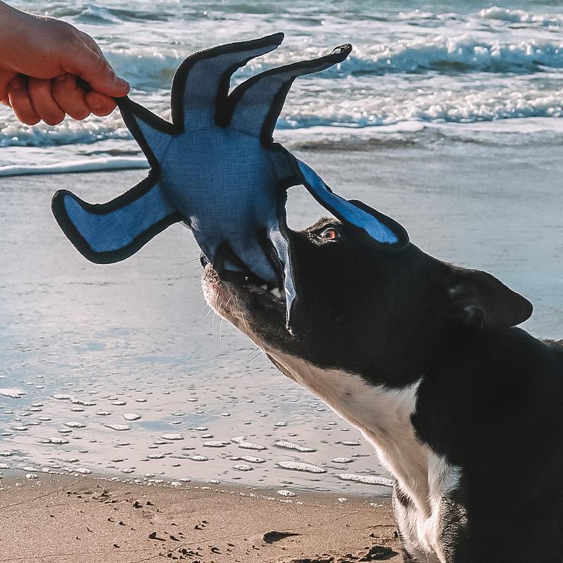 jouet sonore zolia ecopetly pieuvre