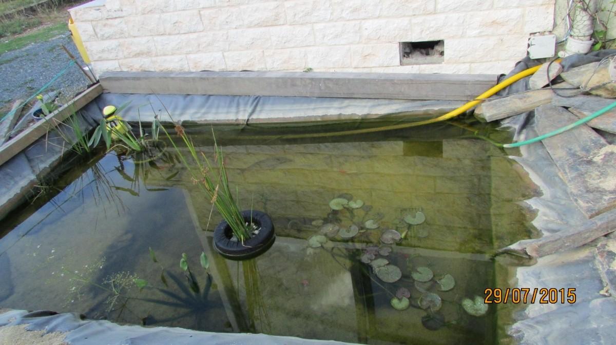 Panier flottant pour plantes de bassin plant bowl for Commander des plantes