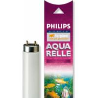 Néon pour aquarium AQUARELLE