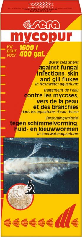 Sera Mycopur Conditionneur d'eau contre les mycoses
