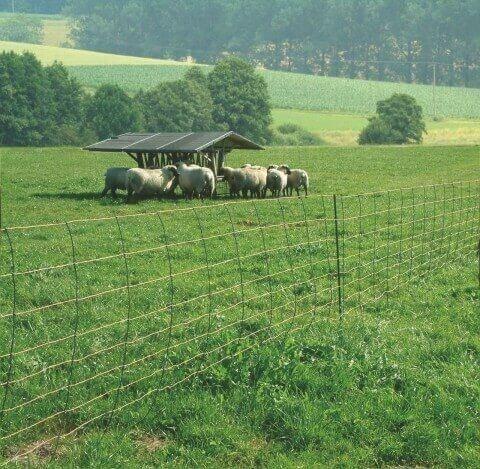 titannet filet mouton avec stabilisateur vertical. Black Bedroom Furniture Sets. Home Design Ideas