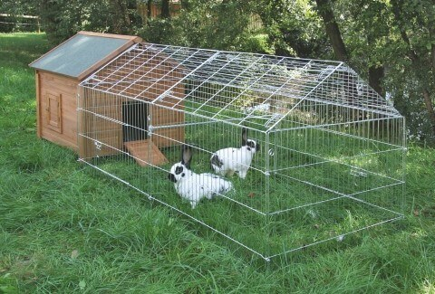 Enclos d 39 ext rieur enclos lapin for Abri lapin exterieur