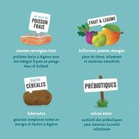 Edgard & Cooper Saumon frais Sans Céréales Hypoallergéniques pour Chien Adulte