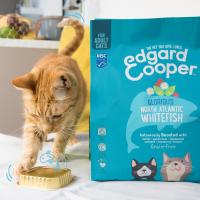 Edgard & Cooper Poisson frais Sans Céréales pour Chat Adulte