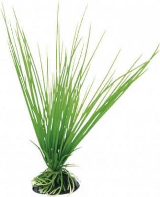 Plante en plastique - Acorus 20 cm