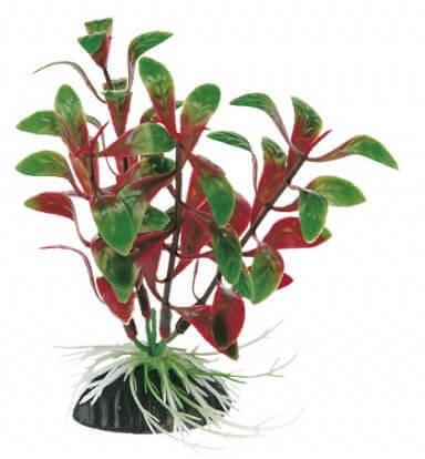 Plante en plastique pour aquarium rotala plantes for Plante pour aquarium