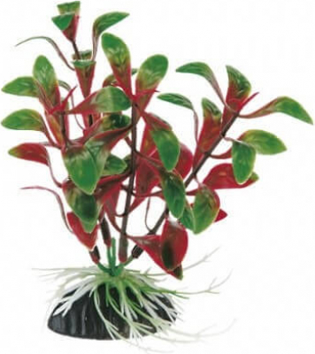 Plante en plastique pour aquarium - Rotala