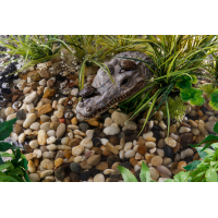 Île crocodile pour terrarium Exo Terra