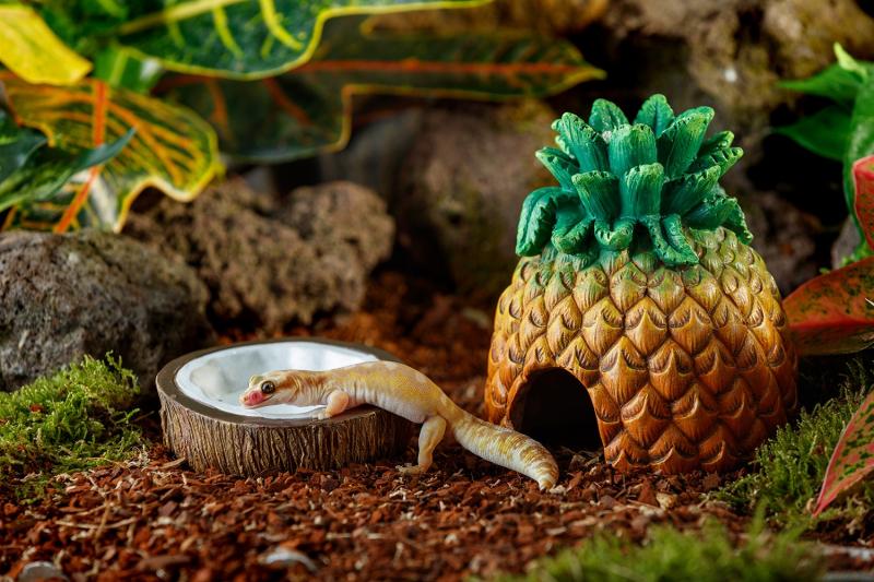 Coconut drinkschaal Exo Terra