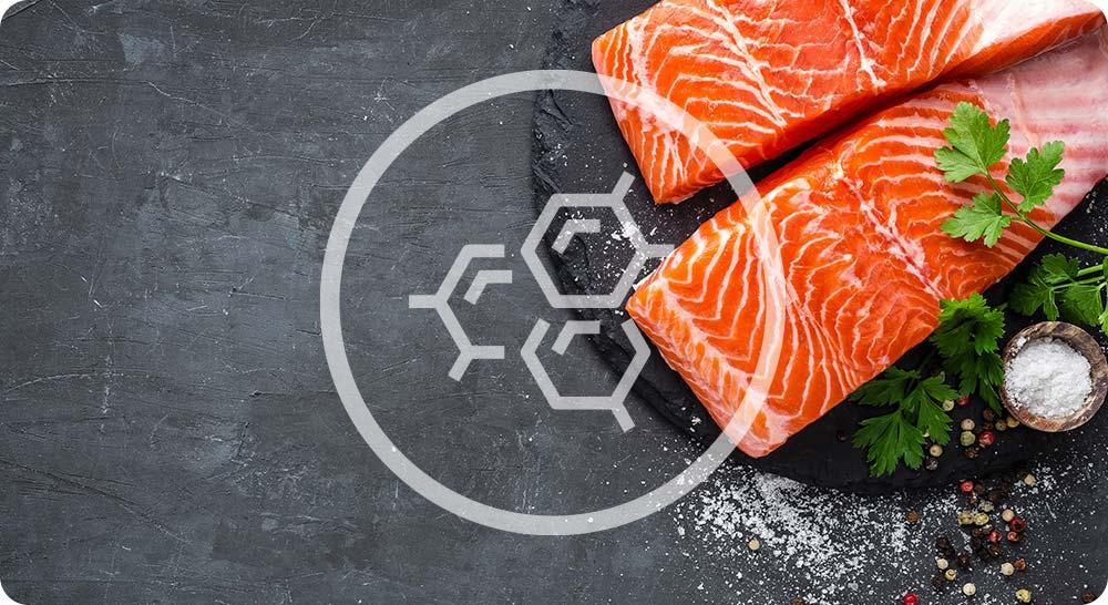 Saumon pour apport en omega 3 et 6